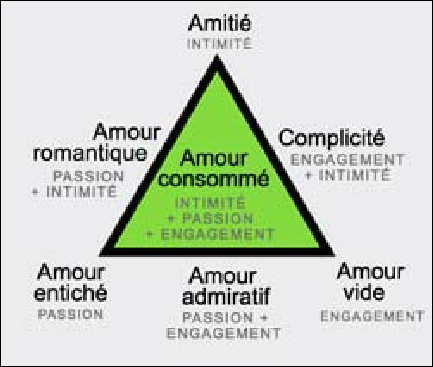shema-amour-composition-ideal-emotion-type-